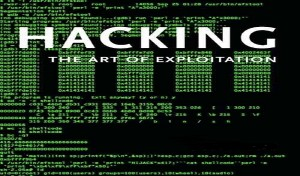 The amount of hacking in the public and private sectors is frightening to many security professionals.