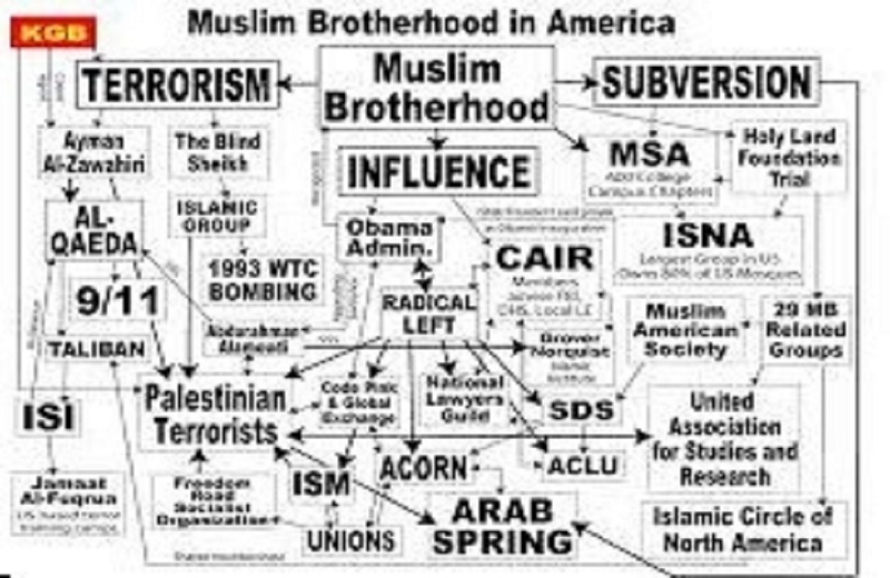 Muslim Brotherhood Chart