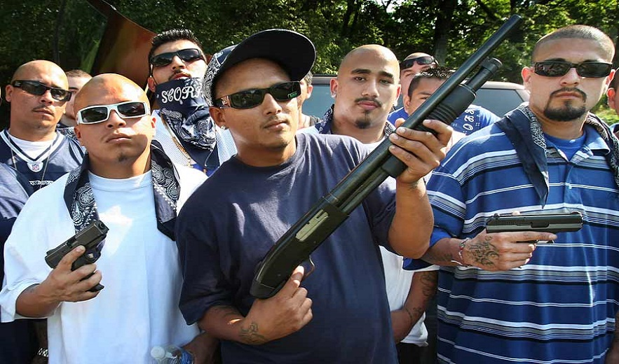 Gang members are armed to the teeth in the United States but the Democrats want tyo disarm American citizens.